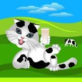 o gato Preto-branco elogia o leite Fotos de Stock