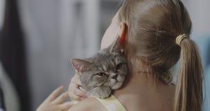 O gato que encontra-se em meninas empurra video estoque