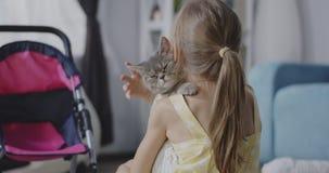 O gato que encontra-se em meninas empurra filme