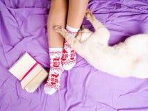 O gato que encontra-se no sofá na sala de visitas decorada para o Natal, os pés fêmeas no Natal golpeia, ao lado do gato ondulado imagem de stock
