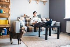 O gato que olha seu anfitrião que jogo nos jogos de vídeo fotos de stock