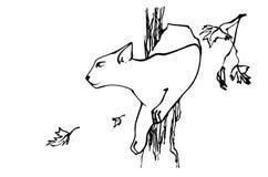 O gato sai da cavidade da árvore Imagem do esboço Fotos de Stock Royalty Free