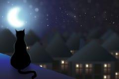 O gato senta-se no telhado Foto de Stock Royalty Free
