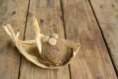 O gelado exótico do pinole de México, um milho asteca baseou o gelado feito bebida em um mercado local Fotos de Stock Royalty Free