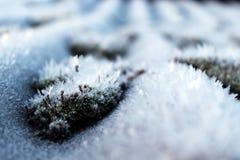 O gelo é agradável frosty Fotos de Stock Royalty Free