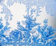 O gelo floresce 08 no azul Fotografia de Stock