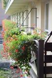 O gerânio floresce no balcão de uma casa Fotos de Stock