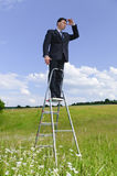 O gerente está na escada da carreira Fotografia de Stock