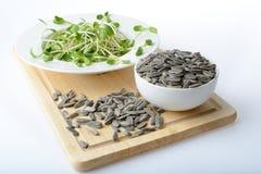 O girassol novo verde brota na placa de salada e nas sementes de girassol Fotografia de Stock