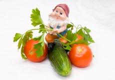 O gnome e os vegetais Fotografia de Stock