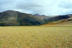 O Gobi de tibet fotografia de stock