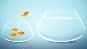 O Goldfish que salta à bacia grande Imagens de Stock