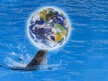 O golfinho com um globo em seu nariz na água azul Excepto o planeta Oceano ou Dia da Terra Elementos desta imagem fornecidos pela foto de stock