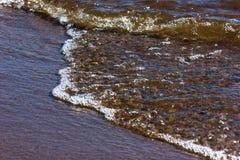 O golfo de Finlandia Fotos de Stock
