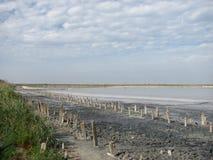 O golfo Sivash, Crimeia Fotografia de Stock