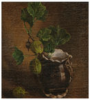O gooseberry Imagem de Stock Royalty Free