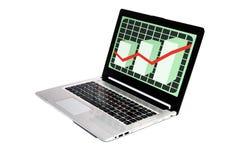 O gráfico mostra o tela de computador Imagem de Stock Royalty Free