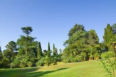 O gramado no montanhês no parque Fotografia de Stock Royalty Free