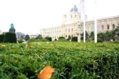 O gramado perto do museu de Art History Fotografia de Stock