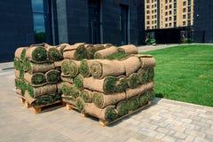 O gramado rolado da grama est? pronto para colocar imagens de stock