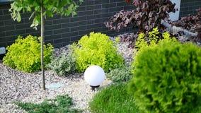 O gramado verde, ajardina formal, jardim da frente é jardim belamente projetado filme