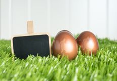 O grampo vazio do quadro-negro e o ouro cor-de-rosa do coelho colorem ovos da páscoa sobre Fotos de Stock