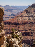O Grand Canyon Fotografia de Stock Royalty Free