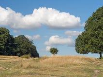 O grande ar livre - campo aberto, Reino Unido Foto de Stock
