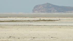 O grande deserto de sal em Irã video estoque