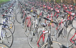 O grande número de ciclos alinhou em uma estrada Imagens de Stock Royalty Free