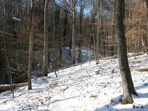O Greenway em Winter3 Imagem de Stock Royalty Free
