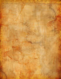 O Grunge manchou o fundo do pergaminho para o inseto ou o cartaz Fotografia de Stock
