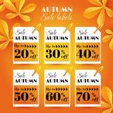 O grupo com etiquetas da venda do outono com castanha sae Imagens de Stock
