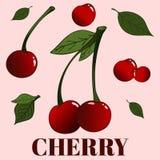 O grupo contém um número de cerejas com e sem as folhas, agrupadas e separadas Imagem de Stock Royalty Free