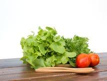 O grupo da salada é tomate, iceberg franzido e carvalho verde colocando no wo Fotos de Stock Royalty Free