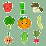 O grupo de ícones lisos do vegetal sorri etiquetas em um fundo verde ilustração royalty free