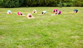 O grupo de amantes da ioga Foto de Stock