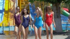 O grupo de amigos no roupa de banho colorido tem o divertimento no aquapark em waterslides do fundo no fim de semana vídeos de arquivo