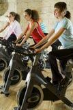 O grupo de exercitar mulheres Imagens de Stock Royalty Free
