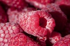 O grupo de framboesas vermelhas frescas fecha-se acima Fotos de Stock