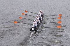 O grupo de Hobart College Men compete na cabeça do Eights mestre de Charles Regatta Men Fotografia de Stock Royalty Free