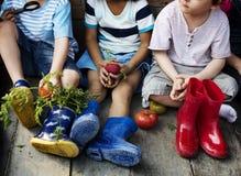 O grupo de jardim de infância caçoa os fazendeiros pequenos que aprendem a jardinagem Fotografia de Stock Royalty Free