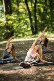 O grupo de jovens pratica a ioga na tranquilidade da natureza Foto de Stock
