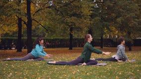 O grupo de jovens senhoras está fazendo a pose praticando Eka Pada Rajakapotasana do rei Pigeon da ioga em esteiras em verde boni vídeos de arquivo