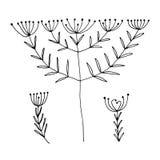 O grupo de mão preta abstrata tirada floresce no estilo da garatuja Ilustração EPS10 do vetor Imagens de Stock Royalty Free