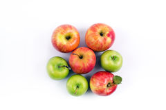 O grupo de maçã frutifica em um fundo branco Imagem de Stock