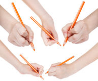 O grupo de mãos tira pelo lápis alaranjado isolado Imagens de Stock Royalty Free