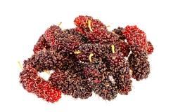 O grupo de mulberrys frutifica isolado dentro no branco Fotografia de Stock Royalty Free