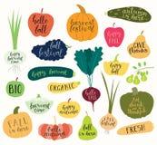 O grupo de outono, colheita cita nas frutas e legumes ilustração stock