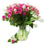 O grupo de rosas cor-de-rosa frescas e as tulipas brancas fecham-se Imagem de Stock